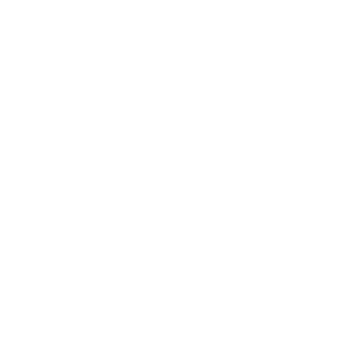 Allescher EDV